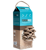 Pack Funghi